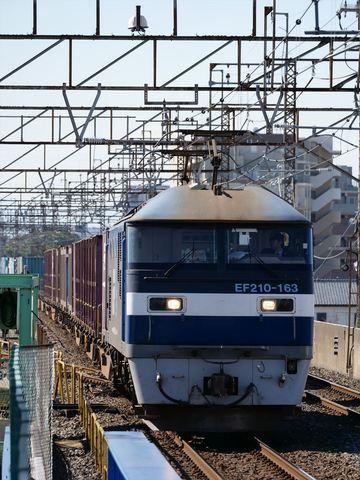 P1155096_R.JPG