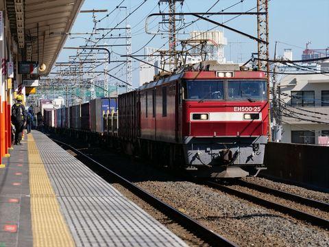 P1155301_R.JPG