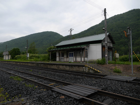 P1380117.jpg